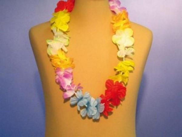 Chaîne hawaïenne...5 Cm de floraison.
