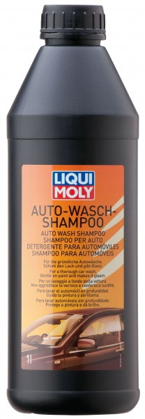 Shampoing car wash